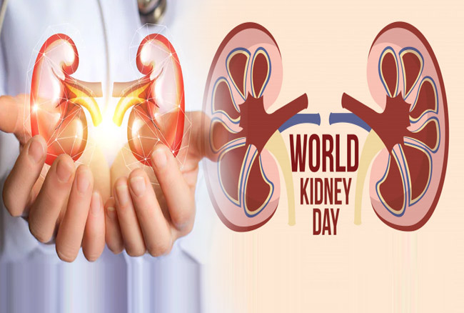 World Kidney Day 2020: рд╡рд░реНрд▓реНрдб рдХрд┐рдбрдиреА рдбреЗ рдкрд░ рдЬрд╛рдиреЗрдВ рдХрд┐рдбрдиреА рд░реЛрдЧ рдХреЗ рд▓рдХреНрд╖рдг-рдмрдЪрд╛рд╡ рдХреЗ рдЙрдкрд╛рдптАж